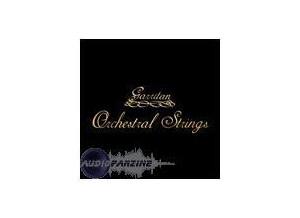 Tascam Garritan Orchestral Strings