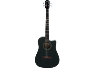 Fender BG-29