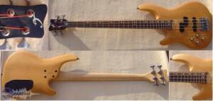 Cheri Bass