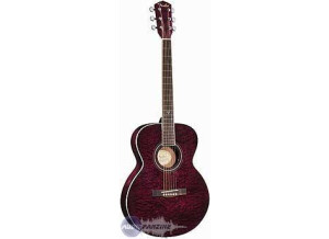 Fender GDO-200