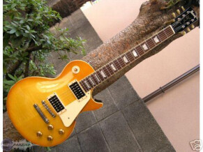 Burny RLG-75