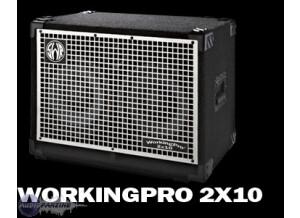 SWR WorkingPro 2x10