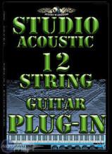 Audiowarrior Studio Acoustic 12-String Guitar