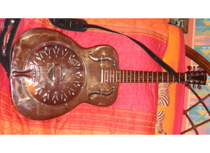 Johnson Guitars MG-10