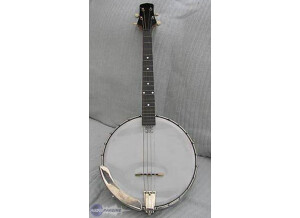 Gibson TB-4 Tenor