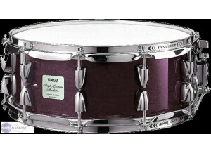 Yamaha Maple custom absolute -plum-