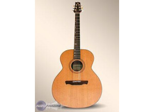 Alhambra Guitars NJ2 E
