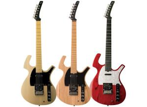 Parker Guitars P-36