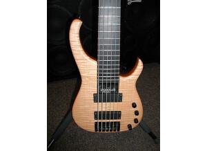 Modulus Guitars Quantum 6