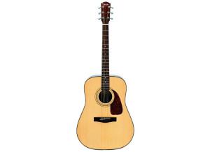 Fender DG-21S