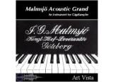 Art Vista Malmsjö Acoustic Grand