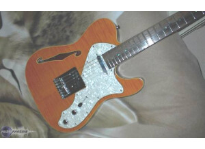 Jim Reed Guitars Telecaster top Thinline