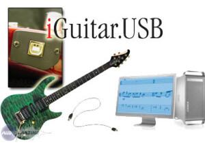 Brian Moore iGuitar.USB