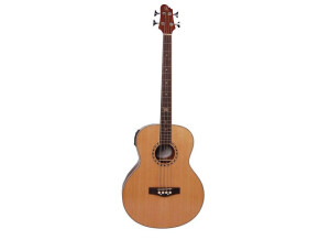 Elypse Guitars Lyna