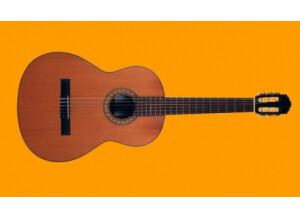 Elypse Guitars PM310