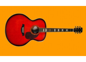 Elypse Guitars Angie