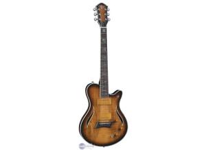 Michael Kelly Guitars Hybrid Special