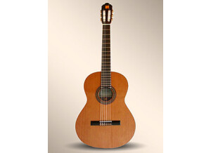 Alhambra Guitars 1 P