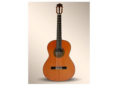 Alhambra Guitars 8P