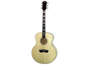 Tennessee Guitars J 200