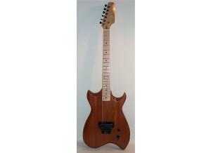 Hoag Guitars K-Max