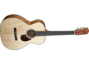 Fender ESV-10 E