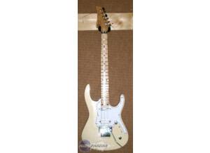 Cem Guitars SilverSword Plus