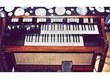 Hammond M101