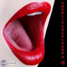 Precision Sound Angelic Vocal Pads 4