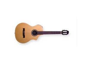 Line 6 Variax Acoustic 300 Nylon