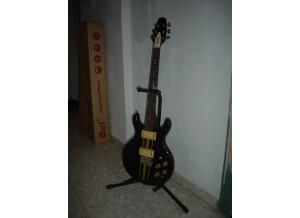 Cort X Guitar