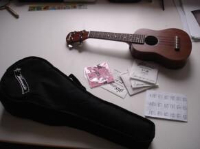 Tennessee Guitars Gewa
