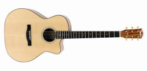 Fender ESA-10 E
