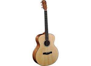Fender ESM-10