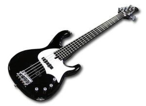 Modulus Guitars FJ5