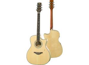 Hofner Guitars HA-GA05