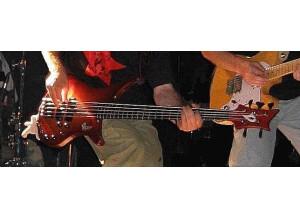 Vigier Passion III 5 Strings