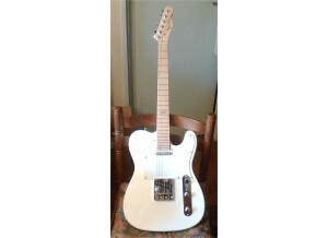 Elypse Guitars TC 100