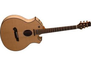 Parker Guitars P8E