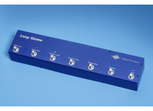 Rjm Music Technologies Loop Gizmo