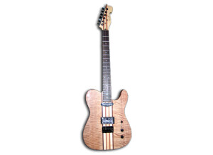 Spear Guitar RT-100