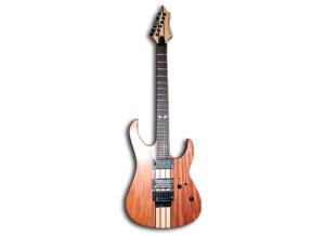 Spear Guitar Gladius-1