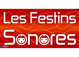Festiv-af Festival Les Festins Sonores