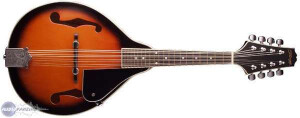 Stagg M20