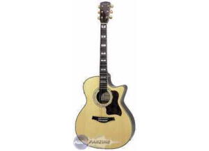Tennessee Guitars T-714ce