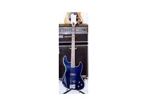 Design Guitars Bass