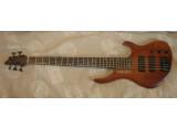 DNG Custom 5 Strings