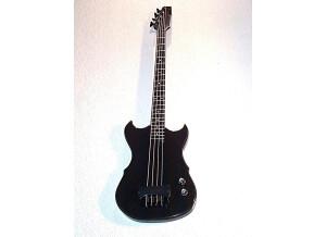 Hoag Guitars Hoag Bass avec sorties séparées