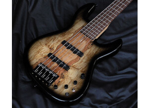 Fodera Guitars NYC Empire