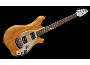 Rees Electric Guitars R2 Guitar